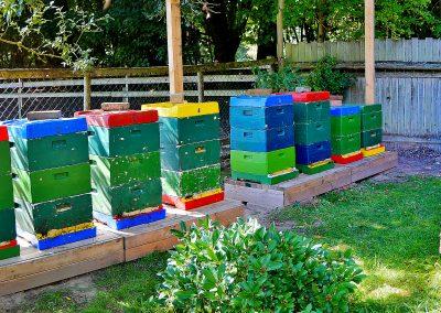 Der Bienenstand