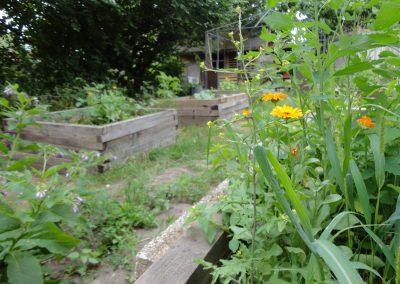 Der Farmgarten